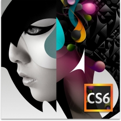 Adobe Creative Suite 6 Design Standard CS6
